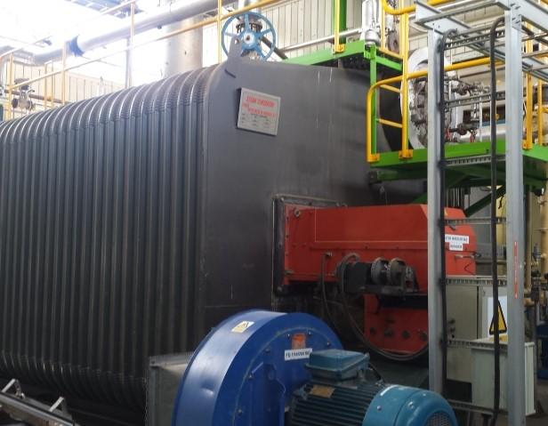 Fonterra Reporoa boiler after annual survey